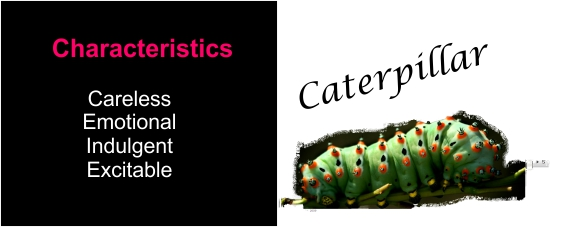 A picture with characteristics of a caterpillar for the Developmental Process.