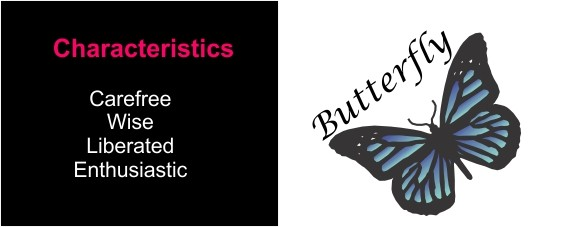 Characteristics of a butterfly for the Developmental Process.