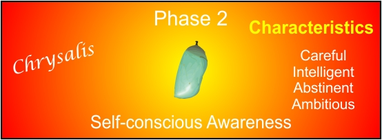 a picture to represent phase 2 in human developmental process.
