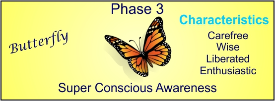 a picture to represent phase 3 in human developmental process.